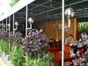 Хотел Булаир 14